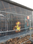 Berliner Mauer - East Side Gallery (102)