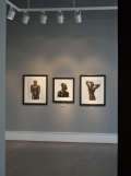 Herb Ritts - Variants (68)