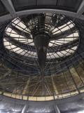 Im Bundestag (35)
