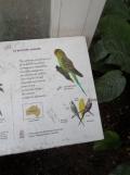 Jardin des serres d'Auteuil (112)