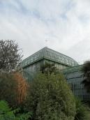 Jardin des serres d'Auteuil (54)
