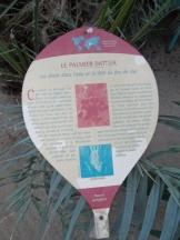 Jardin des serres d'Auteuil (69)
