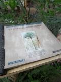 Jardin des serres d'Auteuil (71)