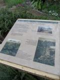 Jardin des serres d'Auteuil (72)