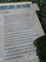 Jardin des serres d'Auteuil (76)