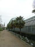 Jardin des serres d'Auteuil (78)