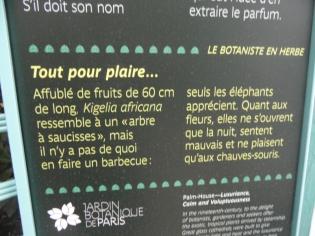 Jardin des serres d'Auteuil (89)