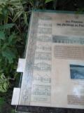Jardin des serres d'Auteuil (93)
