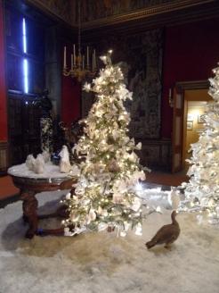 Noël à Vaux le Vicomte (29)
