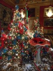 Noël à Vaux le Vicomte (50)