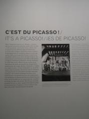 Picassomania! (111)