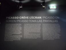 Picassomania! (71)