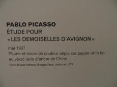 Picassomania! (80)
