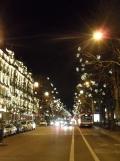 Théâtre des Champs Élysées (30)