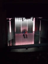 Théâtre des Champs Élysées (59)
