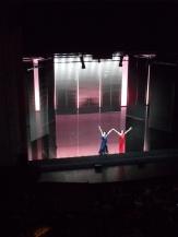 Théâtre des Champs Élysées (60)