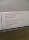 Altes Museum (11)