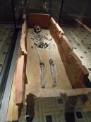 Neues Museum (61)