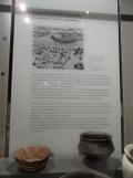 Neues Museum (83)