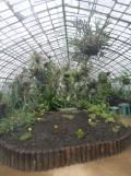 Jardin des serres d'Auteuil (29)