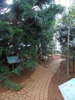 Jardin des serres d'Auteuil (32)
