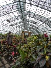 Jardin des serres d'Auteuil (6)