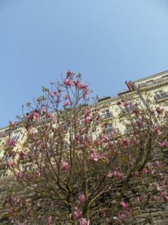 1. Cathédrale St. Pierre et St. Paul de Nantes (6)