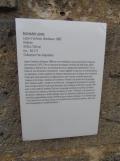 Bordeaux - Musée d'Art Contemporain (55)