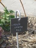 Jardin des Plantes - Nantes et retour (21)