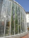 Jardin des Plantes - Nantes et retour (24)