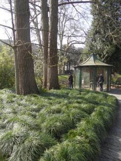 Jardin des Plantes - Nantes et retour (43)