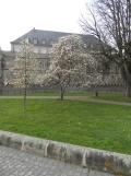 Le château des ducs de Bretagne (1)