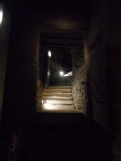Le château des ducs de Bretagne (15)