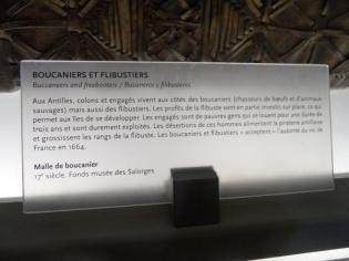 Le château des ducs de Bretagne (38)