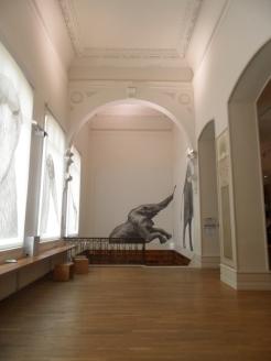 Musée d'histoire naturelle de Nantes (111)