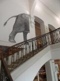 Musée d'histoire naturelle de Nantes (26)