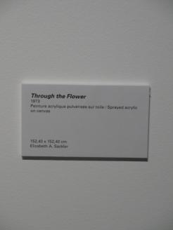 Bordeaux - Musée d'Art Contemporain (25)