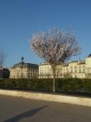 Bordeaux - Place de la Bourse (3)