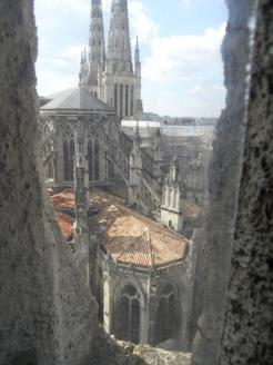 Cathédrale Saint-André et Tour Pey-Berland (111)