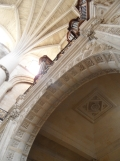 Cathédrale Saint-André et Tour Pey-Berland (32)