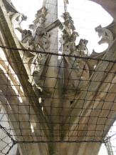 Cathédrale Saint-André et Tour Pey-Berland (69)