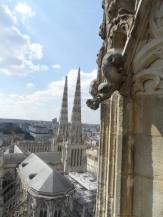Cathédrale Saint-André et Tour Pey-Berland (95)