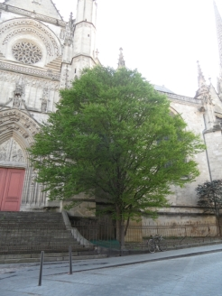 Flèche Saint-Michel (78)
