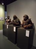 Musée d'Aquitaine (110)