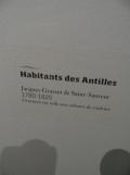 Musée d'Aquitaine (35)