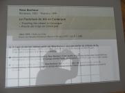 Musée des beaux arts (31)