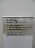 Musée des beaux arts (54)