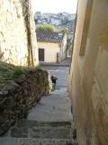 Saint-Émilion (12)
