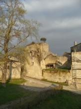 Saint-Émilion (41)