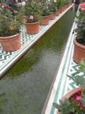 2. Jardins d'Orient (145)